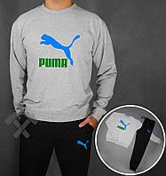 Серый спортивный костюм Puma