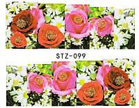 Слайд для дизайна ногтей STZ-99