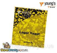 Пивные лагерные дрожжи Young's Lager Yeast
