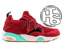 Мужские Кроссовки Sneaker Freaker X Puma Trinomic Blaze Of Glory ... c92ccc17e3b