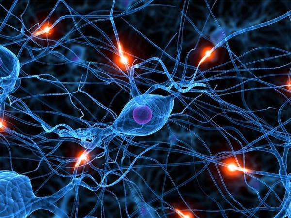 Успокоительные средства для нервной системы.