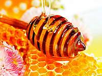 Мёд Цветочно-подсолнечный 0.5л