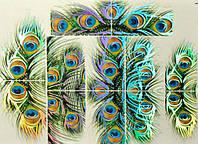 Слайдердизайн для ногтей 43D (TM-449 павлиньи перья - серебро голографическое)
