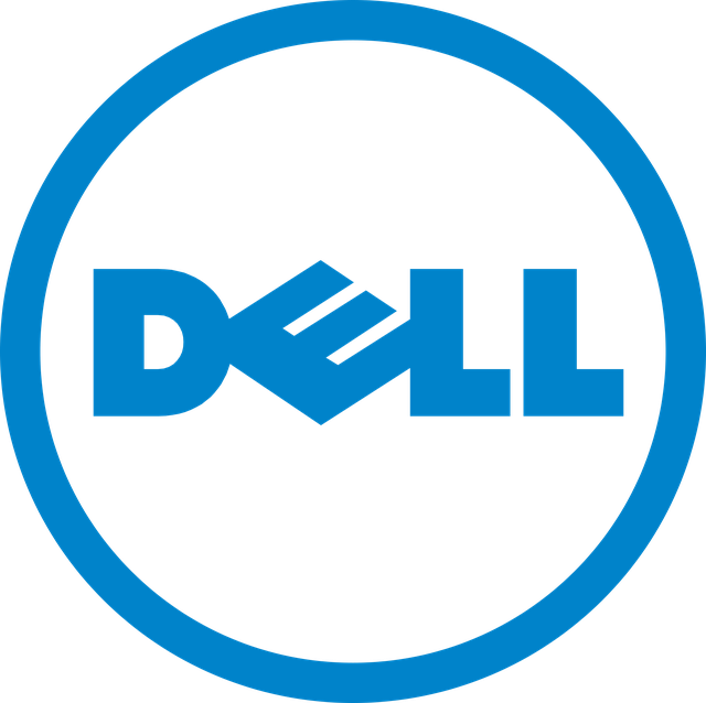 DELL N4010