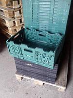 Ящик пластиковый складной ORTUS