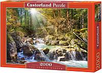 Кастор пазлы 2000 Лесной ручей