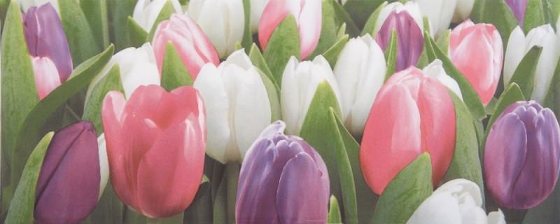 Плитка облицовочная АТЕМ Tulip Mini Pn (17016)
