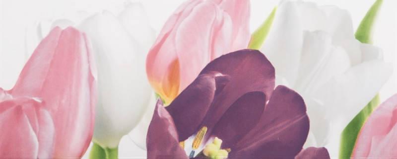 Плитка облицовочная АТЕМ Tulip 1 Pn (16677), фото 2