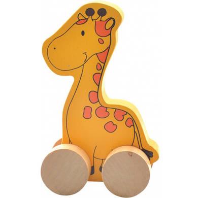 Каталка Жираф, МДИ