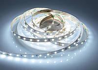 LED лента Prolum 12V SMD2835 60led/m 4,8W IP20 Белый
