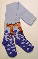 Мальчиковые колготки с Жирафом голубого цвета