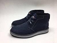 Мужские ботинки Tommy Hilfiger синие нубук