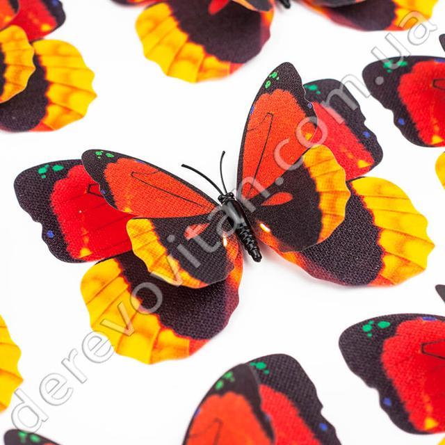 Бабочки и перья
