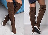 Сапоги женские ботфорты замшевые без каблука