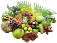 Ароматизатор Тропические Фрукты оптом Xian «Tropical Fruits» Ксиан Тропические фрукты (100 мл)