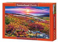 Пазлы Castorland 1000, С-103539