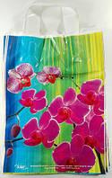 """Пакет с петлевой ручкой (25*35)"""" Орхидея  """" хвг (25 шт)"""