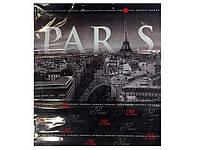 """Пакет с пластиковой ручкой  СБ """"Париж """" (10 шт)"""