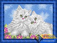 Схема для вышивки бисером - Пара котят, Арт. ЖБп4-50