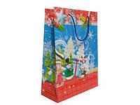 Подарочный пакет  (30*20*9.5) АРТ2 НГ (10 шт)