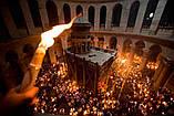 Свеча иерусалимская желтая (пучек), фото 7