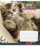 Тетрадь в клетку с котиками Kittens Funny Moments -17 на 12 листов, фото 2