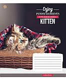 Тетрадь в клетку с котиками Kittens Funny Moments -17 на 12 листов, фото 3