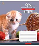 Тетрадь в клетку с котиками Kittens Funny Moments -17 на 12 листов, фото 5