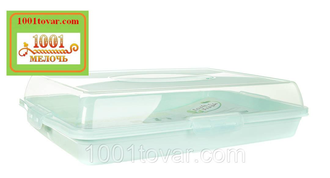 Тортовница прямоугольная пластиковая с ручкой для переноски. Dunya Plastik, Турция - фото 5
