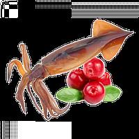 Бойлы прикормочные растворимые Кальмар/Клюква 20мм 1кг Grandcarp