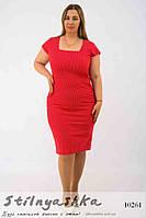 Платье-футляр мелкий горох для полных красное