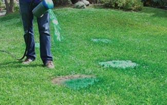 Гидропосев газона Hydro Mousse Liquid Lawn, фото 3