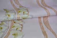 Обои на стену, орхидеи, цветы, светлые, бумажные Эксклюзив 029-04, 0,53*10м