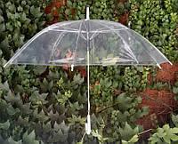Зонт-трость прозрачный с белой ручкой