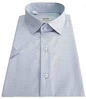 Мужская рубашка приталенная с коротким рукавом в клетку №10-16 - 50-1107 V4