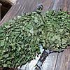 Банный веник из берёзы, фото 4