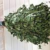 Банный веник из берёзы, фото 3