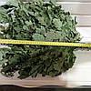 Банный веник дубовый, фото 2