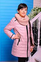 Куртка «Маргарита», пудра
