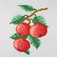 """Канва с рисунком для вышивки крестом  """"Яблоки"""""""