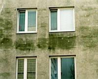 MultiChem. Антисептик фасаду FungusFacade, 1 кг. Антисептик поверхности бетона, гипса, от плесени и грибка.