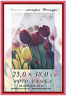 Фоторамка пластиковая, рамка для фото, дипломов, сертификатов, грамот, формата округлый, настенное, Пластик, 25х38, 14-17, Классика