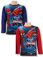 Реглан для мальчиков Spider-man оптом, 3-8 лет .
