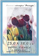 Фоторамка пластиковая, рамка для фото, дипломов, сертификатов, грамот, формата округлый, Пластик, 25х38, 14-17, Классика