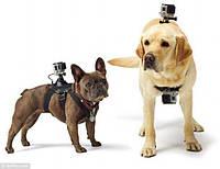 Крепление GoPro Fetch Dog Harness (крепление на собаку) (ADOGM-001)