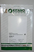 Акира F1 семена капусты белокачанной ранней Kitano Seeds 1000 с