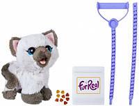 Котенок Ками, друг Пакса, интерактивная игрушка, FurReal Friends, Hasbro (C1156)