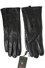 Женские перчатки Felix Большие 14W-049s3, фото 3