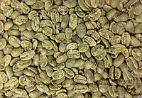 Арабика Колумбия Марагоджип (Arabica Colombia Maragogype) 1кг. ЗЕЛЕНЫЙ