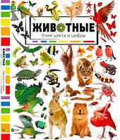 Животные, Учим цвета и цифры (русский язык), Виват (9786176909248)